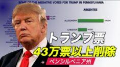 調査団体「ペンシルベニア州で43万票以上のトランプ票が削除された」