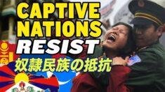 CCPと戦う「奴隷扱いされている民族」【チャイナ・アンセンサード】