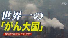 世界一の「がん大国」中国 環境問題が最大の要因