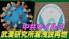 中共ウイルス研究所漏洩説再燃 感染拡大前に研究者3人が発病=米情報機関