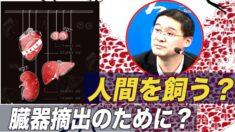 フォロワー多数の中国人法律研究者「臓器狩りは故意の殺人」