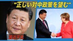 「正しい対中政策を望む」習近平氏 独メルケル首相と電話会談