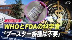 WHOとFDAの科学者「ブースター接種は不要」