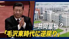 共同富裕?「毛沢東時代に逆戻り」