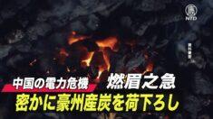中国で続く電力制限 中共が豪州の石炭輸送船から荷下ろしを開始【禁聞】